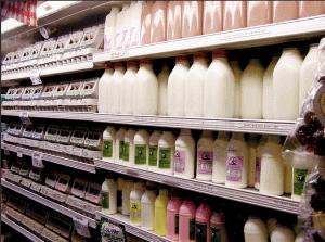 milk-300x223